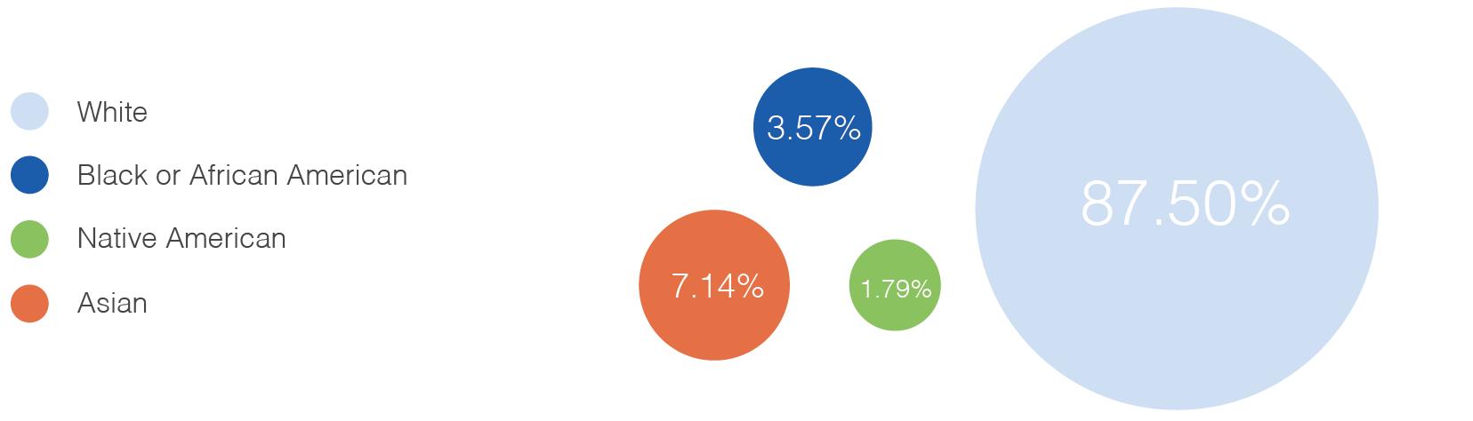 Ethnicity Statistics
